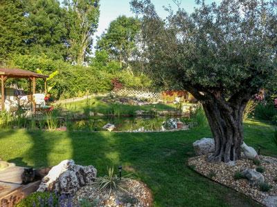 création de jardins, paysagiste en charente-maritime