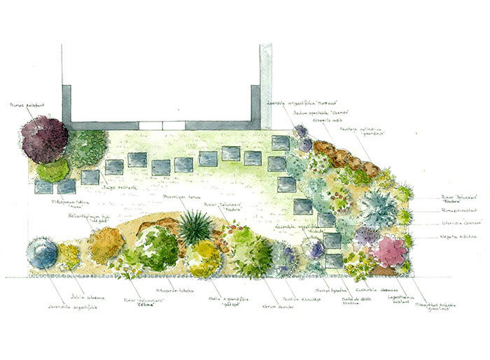 Cr ation de jardins paysagiste en charente maritime for Plan amenagement jardin rectangulaire